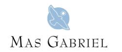 Mas Gabriel